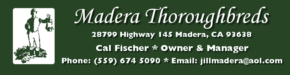 Madera Thoroughbreds